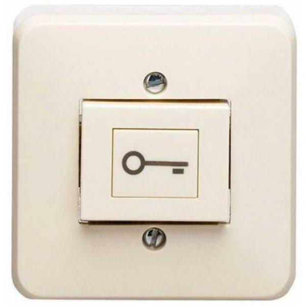 """Фото 1 - Кнопка разблокировки с символом """"ключ"""" 333 АТ."""