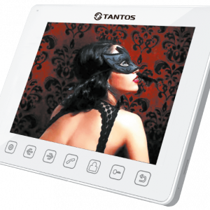 Фото 20 - Монитор для домофона адаптированный TANGO + (XL или VZ).